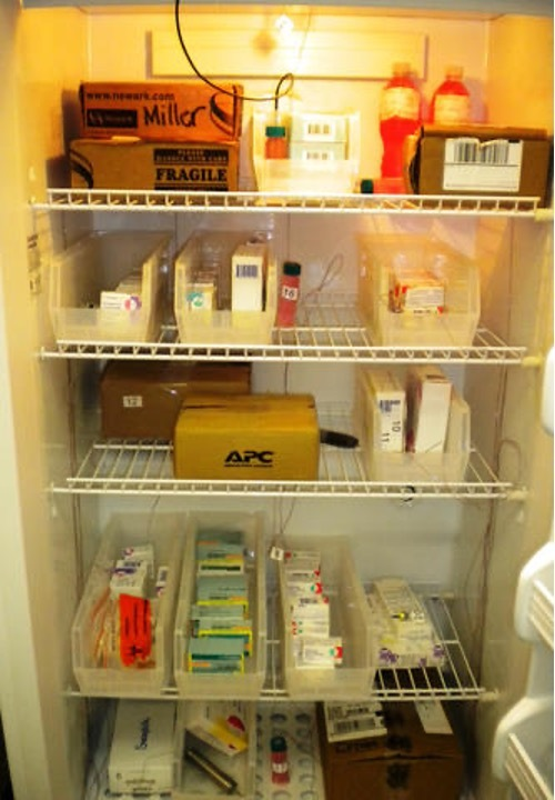 medial refrigerator packing