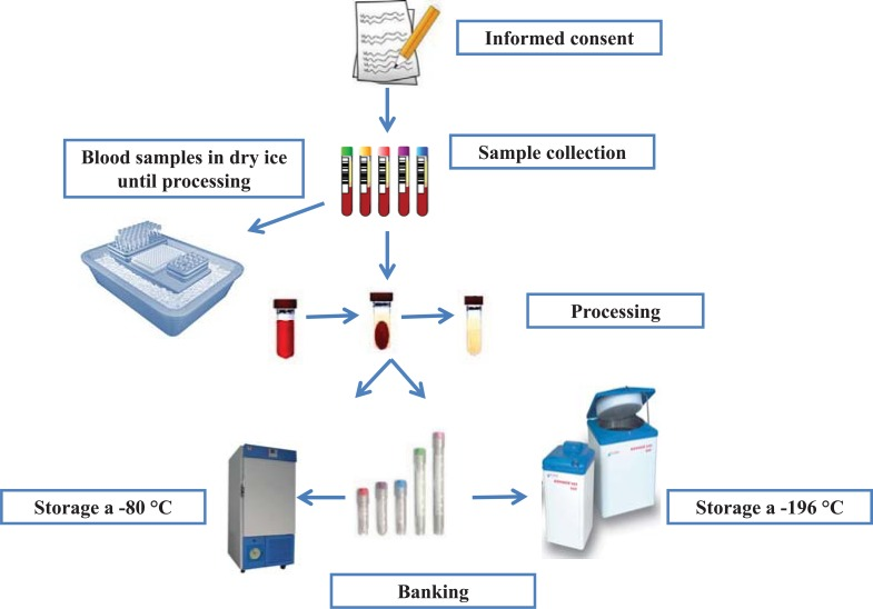 tissue monitoring procedure